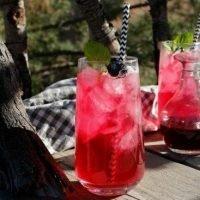Homemade Blackberry Soda
