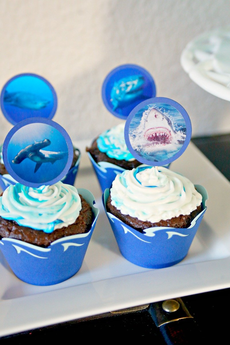Shark themed cupcakes for shark themed birthday party #sharkparty