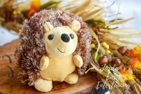 a stuffed hedgehog toy with fall foliage